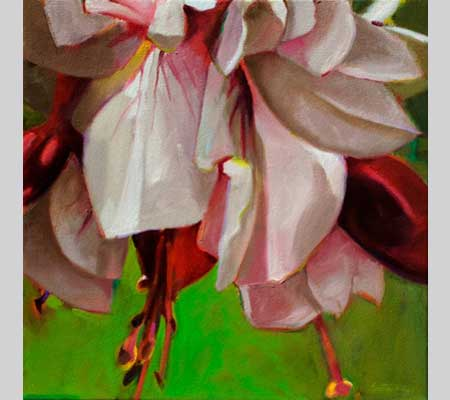 fuchsia petals in pink and red, called Pink Petticoats