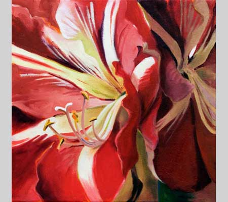bold closeup of amaryllis petals and stamens in reds and creams called Flirtation